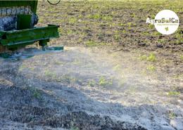 Wysiew nawozu AgroSulCa